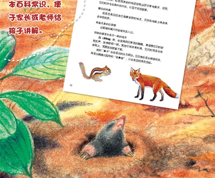 【特卖】5册小脚丫神奇的动物故事儿童绘本图书-贝贝